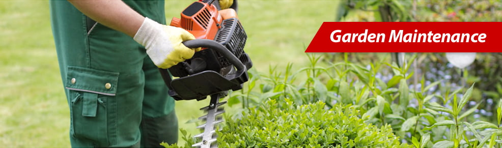 Garden maintenance uk commercial cleaning for Garden cleaning services